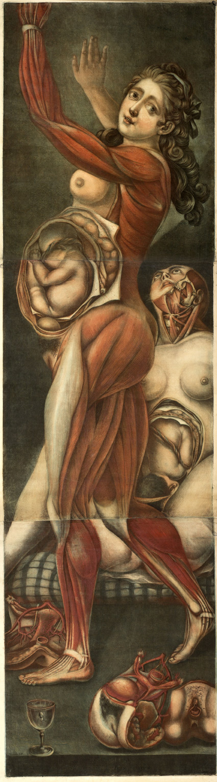 femme-enceinte-gautier-agoty